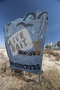 Salton Sea Prints - Mudsuckers Print by Scott Campbell