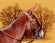 Straps Digital Art Metal Prints - Mule Days - Westmoreland Tn  9-28-13 Metal Print by EricaMaxine  Price