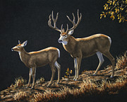 Antlers Metal Prints - Mule Deer Ridge Metal Print by Crista Forest