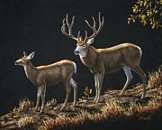 Mule Deer Ridge Print by Crista Forest