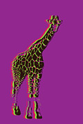 Beauty Balance Design - Multi Color Giraffe