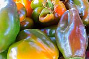 Green Grocer Prints - Multicolored Peppers Print by Susan Colby