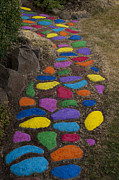 Stepping Stones Prints - Multicolored rock path Print by Jim Corwin