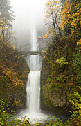 Falls Posters - Multnomah Autumn Mist Poster by Mike  Dawson
