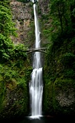 Falls Photos - Multnomah Falls at Columbia River Gorge by Jetson Nguyen
