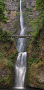 Multnomah Falls - Columbia River Gorge Print by Sandra Bronstein