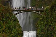 Boren Framed Prints - Multnomah Falls Framed Print by Nick  Boren