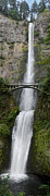 Multnomah Falls Vertical Panorama II Print by Loree Johnson