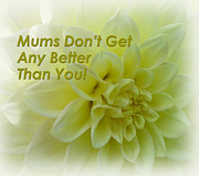Beautiful Flowers For Mothers Day Digital Art - Mums Dont Get Any Better Than You by Faye Giblin