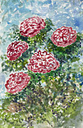 Colored Pencils Painting Originals - Mums from my garden  by Cathy Peterson