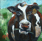 Moo Moo Paintings - Munchy Moo by Carole Foret
