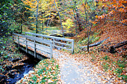 Munising Mixed Media Metal Prints - Munising Falls Bridge  Metal Print by Michael P Ray