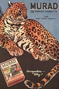 Smoking Drawings Posters - Murad 1910s Usa Cigarettes Smoking Poster by The Advertising Archives
