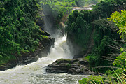 Stefan Carpenter - Murchison Falls