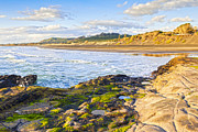 Auckland Prints - Muriwai Beach Auckland New Zealand Print by Colin and Linda McKie