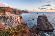 Summer Sunset Posters - Muriwai Gannet Colony Auckland New Zealand Poster by Colin and Linda McKie