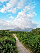 Lilroseann Photography Prints - Murlough National Nature Reserve Print by LilRoseann Photography