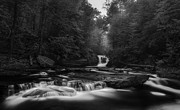 Reynolds Framed Prints - Murray Reynolds Falls Monotone Framed Print by Michael Lawrence