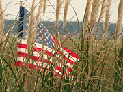Making Memories Photography LLC - Murrells Inlet Old Glory...