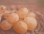 White Grapes Posters - Muscat Aroma Poster by Irina Wardas