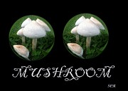 Mushroom Digital Art - Mushroom Art Collection 3 by Saribelle Rodriguez by Saribelle Rodriguez