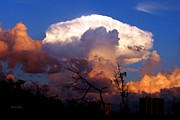 Doris Wood - Mushroom Cloud at Sunset