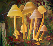 Oversized Painting Originals - Mushrooms by Dan Breakspear