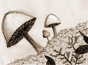 Fungi Digital Art - Mushrooms in Sepia by Jennifer Atherton