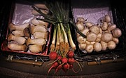 Fresh Produce Prints - Mushrooms in the Seville Market  Print by Mary Machare
