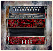 Love Making Prints - Music - Old Accordion - Media Room Print by Barbara Griffin