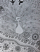 Musical Notes Drawings Prints - Musical Peacock Black and White Print by Alexandra Benson