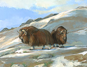 ACE Coinage painting by Michael Rothman - Musk Oxen