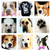 Veterinary Metal Prints - Must Love Dogs 1 - Cute Fun Fur Babies Art Metal Print by Sharon Cummings