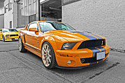 Yellow Cobra Prints - Mustang Alley Print by Gill Billington