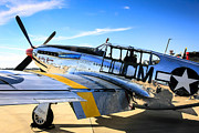 P51 Mustang Posters - Mustang Jane Poster by Chris Smith