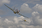 Classic Aircraft Prints - Mustang Pair Print by Pat Speirs