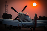 P51 Photo Posters - Mustang Sunset Poster by Paul Job