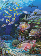 Scuba Paintings - Mutton Reef Re002 by Carey Chen