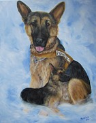 Working Dogs Framed Prints - MWD Bak R197-German Shepherd Framed Print by Barb Yates