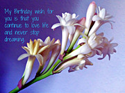 Jo Ann - My birthday wish for you...