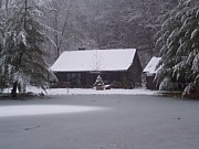 Brady Harness - My Cabin in Winter