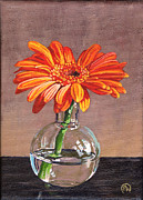 Gerbera Daisy Paintings - My Corona by Paige Wallis