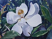 Jan Bennicoff - My First Magnolia