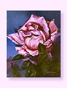 Print On Acrylic Framed Prints - My First Rose Framed Print by Lynne Wright