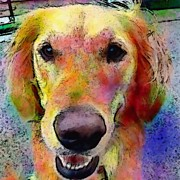 Portraits Art - My Friends Dog #portrait #dogportrait by Robin Mead