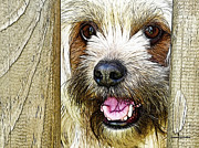 Pretty Dog Posters - My Girl Poster by Robert Orinski