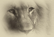 Bravery Digital Art Posters - My Lion Eyes in Antique Poster by Thomas Woolworth