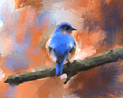 Songbird Paintings - My Little Bluebird by Jai Johnson