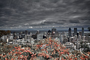 Aperture Photos - My Montreals Colors by Donato Iannuzzi