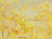 Forsythia Photos - My Own Sunshine by Irina Wardas